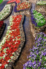Colourful flowerbeds © Arena Photo UK