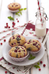 Chocolate and cranberries cakes