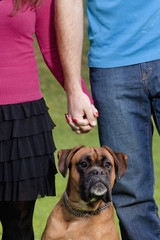 Couple Holding Hands with their Dog