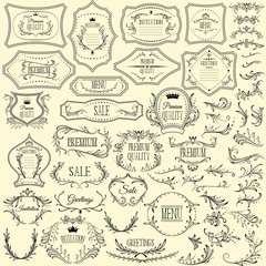 Collection of floral design elements and frames