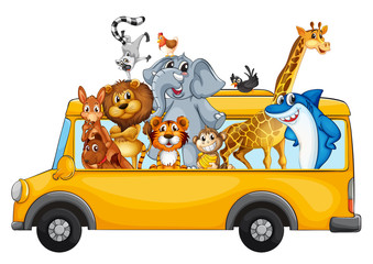 Animals on school bus