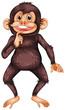 Chimpanzee