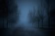 Dark park - 69669136
