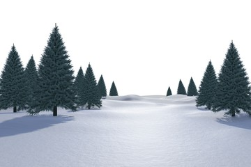 White snowy landscape with fir trees