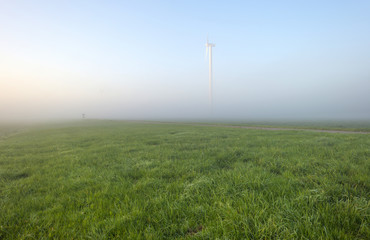 Wind turbine in a foggy meadow at dawn