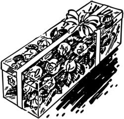 Box Of Long Stem Roses