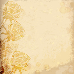 Realistic old paper with roses. Vector illustration