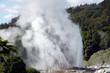 natural hot water geysers - 69681563