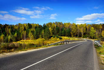Autumnal nature, road