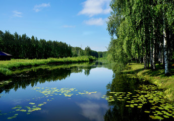 Summer nature, river in calm day