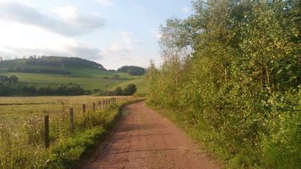 Wanderweg im Sauerland