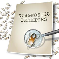 Diagnostic termites 4