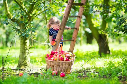 Leinwanddruck Bild Little girl in an apple garden