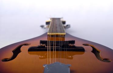 Mandolin detail on white background