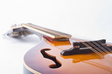 Mandolin detail on white background