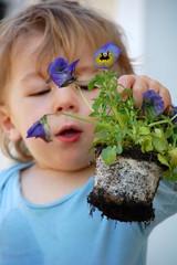 Junge hilft beim Blumenpflanzen
