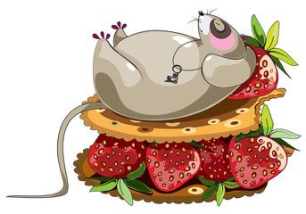 fat lazy mouse