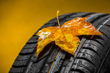 Canadian car car tires with autumn leaf