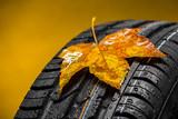 Fototapety Canadian car car tires with autumn leaf