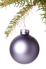 Christmas ball hanging from a branch of a fir tree