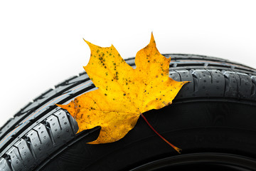 car tires change in the autumn leaf