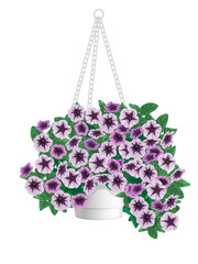Petunia flowers in pots hanging on a chain.