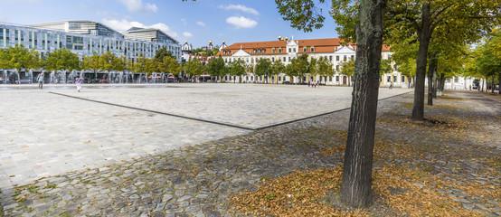 Baumallee am Domplatz in Magdeburg