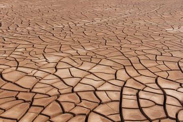 Cracked Soil Drought