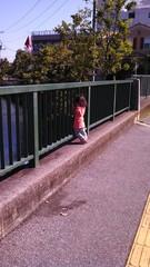 柵に顔を入れる子供