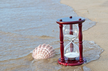 sand timer and seashell on the seashore