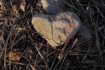 Caillou en forme de coeur