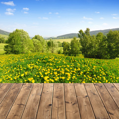 Spring landscape with wooden planks
