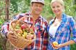 Gardeners with apples