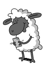 Sheep playing on phone