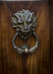 lion door knocking
