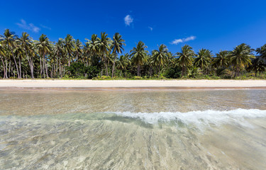 floating toward the beach