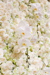 white flowers background.