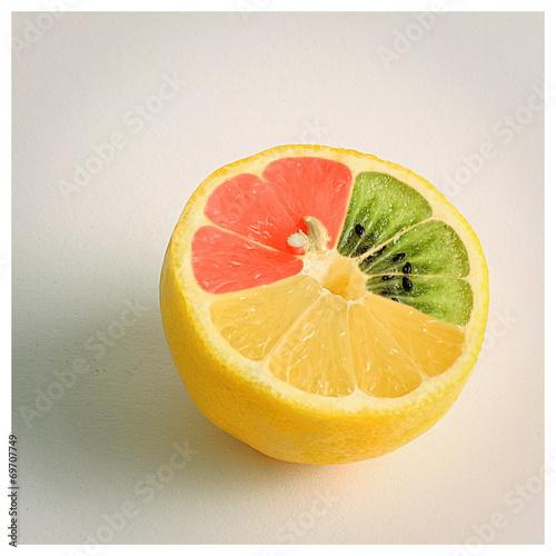 canvas print picture mutierte Zitrone