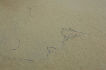 Trace of water on the sand