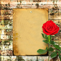 Red rose with green leaves on the wooden abstract background