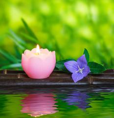 ロウソクと桔梗の花
