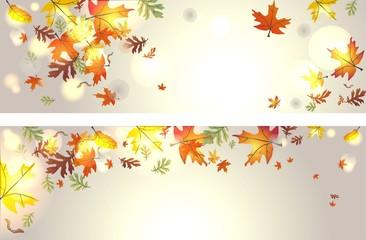 Set mit 2 Herbstbannern