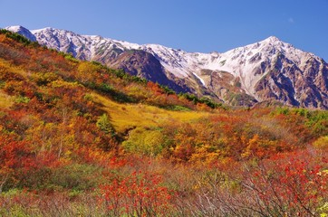 NORTHERN ALPS Happo Ridge in Japan 北アルプス紅葉