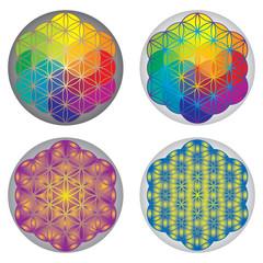 Ensemble Symboles Fleur de Vie - Multicolore