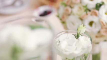 Several White Rose in vase
