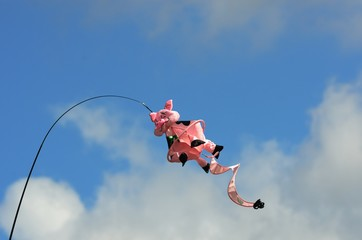 Novelty pig kite flying