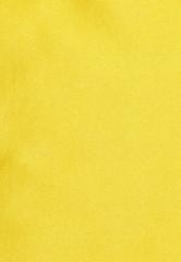 High Resolution Silk Texture - Georgette