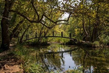 kurşunlu şelasinde ahşap köprü