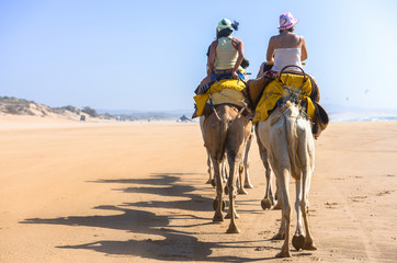 Tourists riding on the back of camels along sandy shore