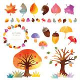 秋の自然素材